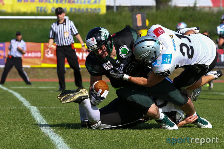 Swarco Raiders, Danube Dragons