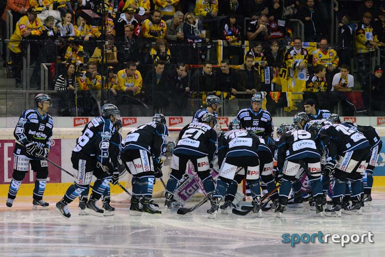 Black Wings Linz, Dornbirn Bulldogs, #DECEHL, #DECBWL