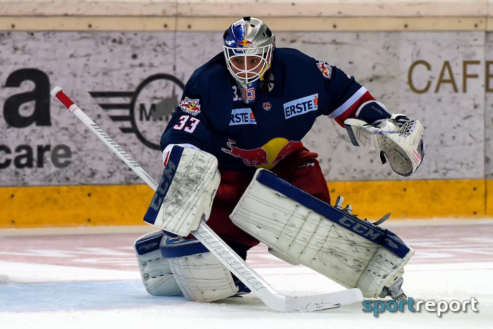 Eishockey, EBEL, Erste Bank Eishockey Liga, EC Red Bull Salzburg, Red Bull Salzburg, Dornbirner EC
