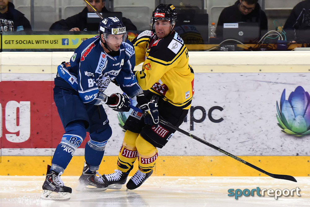 Eishockey, EBEL, Erste Bank Eishockey Liga, Vienna Capitals, Fehervar, Fehervar vs. Vienna Capitals