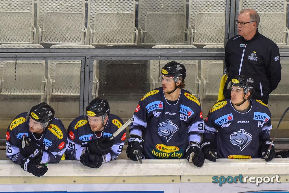 Vienna Capitals, EBEL, Henrik Neubauer, Verpflichtung - Foto © Sportreport