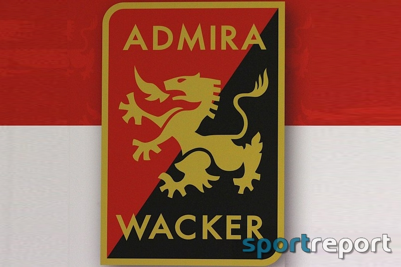 Dominik Starkl, Admira Wacker