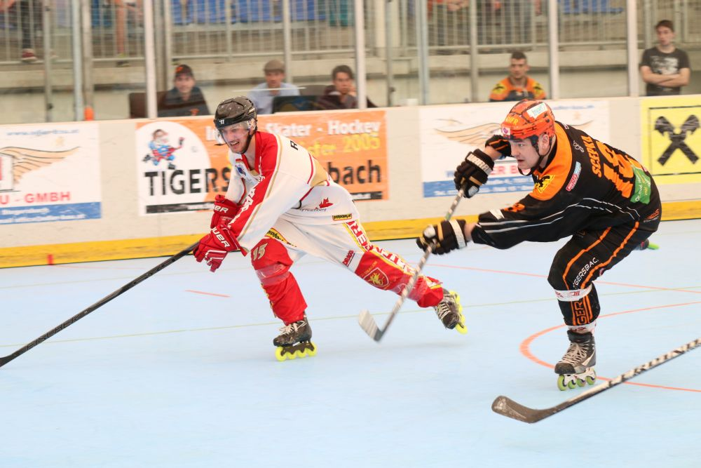 Skaterhockey, Bundesliga, Inline-Skaterhockey, Mad Dogs Wiener Neustadt, Tigers Stegersbach, Dark Vipers Salzburg, Irish Moose Linz, Swinging Monkey Stockerau, Lunatic Hockey Team Wien, Red Dragons Altenberg, Kapazunder Hockey Linz