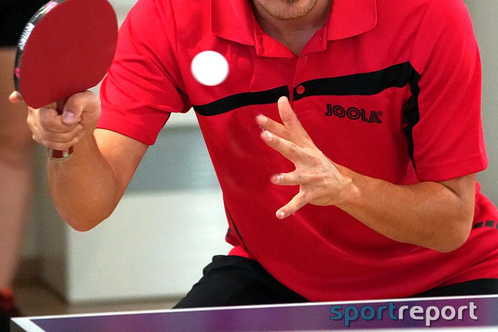 Tischtennis, Bundesliga, Tischtennis-Bundesliga